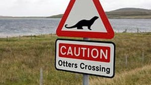 Otter crossing sign