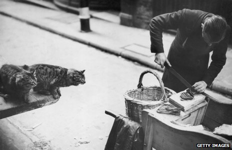 City meat man feeds cats at the beginning of 1939