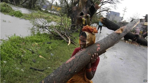 An Indian woman carries away a branch of an uprooted tree from Cyclone Phailin as municipal workers clear a main highway in Berhampur, India, Sunday, Oct. 13