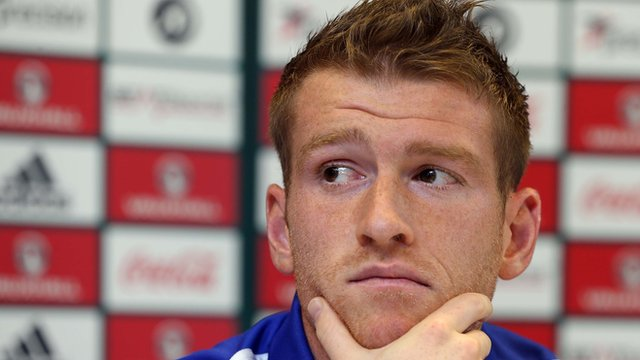 Northern Ireland skipper Steven Davis