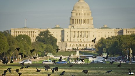 A flock of birds takes flight on the National Mall in front of the US Capitol building in Washington, DC, 14 October 2013