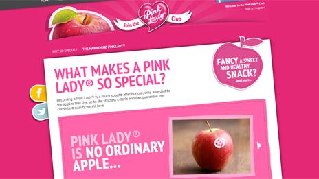 Pink Lady website