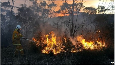 Firefighter tackles a blaze near Bell, NSW (20 Oct 2013)