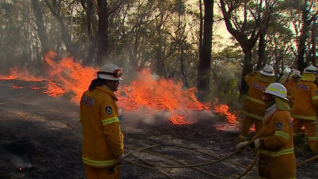 "Firefighters ""back-burning"" in New South Wales"