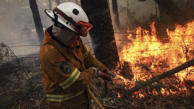 Firefighter battling a blaze in the Blue Mountains