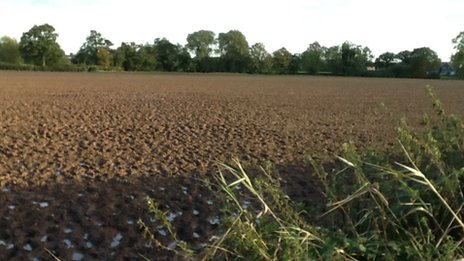 Field in Leicestershire