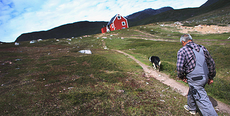 Farmer in Greenland