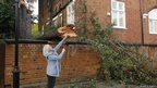 Melanie de Quincey sent in this photograph of a fallen tree in Holland Park, London