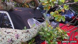 Crushed cars in Christchurch