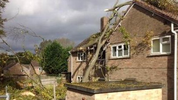 A tree was brought down by the storm onto a house in Bulford