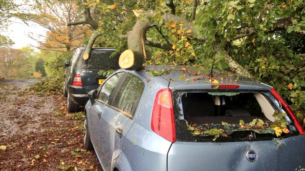 Tree down on cars at Marlborough Buildings, Bath