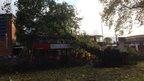 A tree has fallen on a bus.