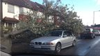 A large tree has fallen across a front garden and the branches are on a car.
