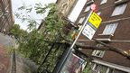 "A tree has fallen on a bus stop. A yellow sign states: ""Bus stop not in use."""