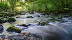 Adam Brooks of Swansea says he took this image of the River Twrch just as autumn was creeping in.