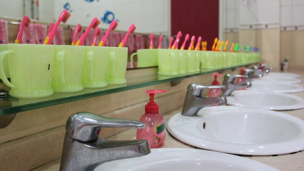 Toothbrushes lined up by the sink