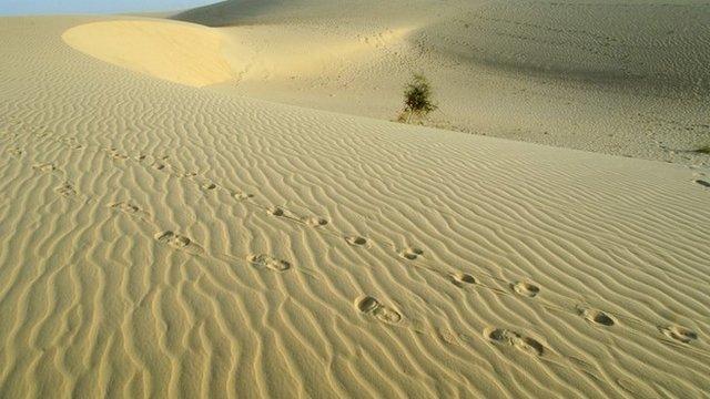 Sahara desert in Mali