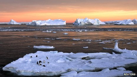 Adelie penguins on an ice floe near the French station at Dumont d'Urville in East Antarctica