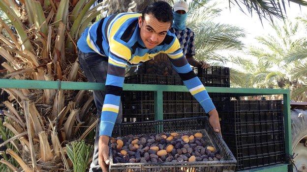 Palestinian gathering dates
