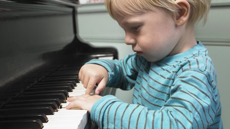 Music lessons 'sculpt the brain'