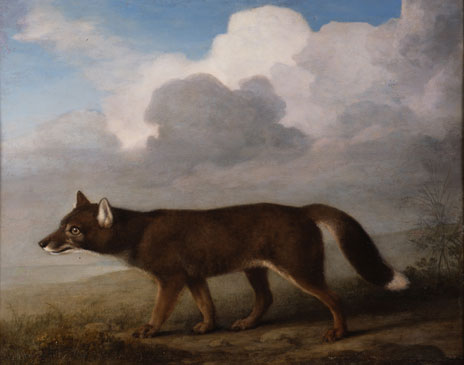 Portrait of a Large Dog by George Stubbs