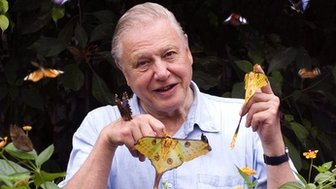 David Attenborough with butterflies