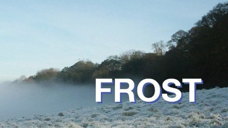 Frost picture