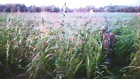 Marines footage
