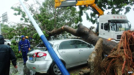 Rescuers try to to remove a car trapped under a fallen tree on Hainan island. Photo: 11 November 2013