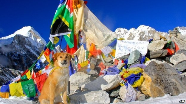 Rupee at Everest base camp