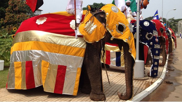 Ceremonial elephants in Colombo on Friday