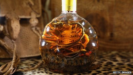 Snake in bottle of spirits