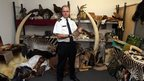 UK Border Force officer stood in a room full of ivory, elephant tusks and stuffed animals