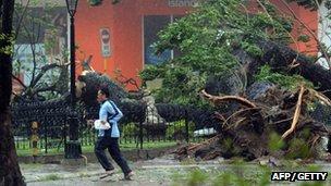 A man runs past an uprooted tree as Typhoon Haiyan pounds Cebu City