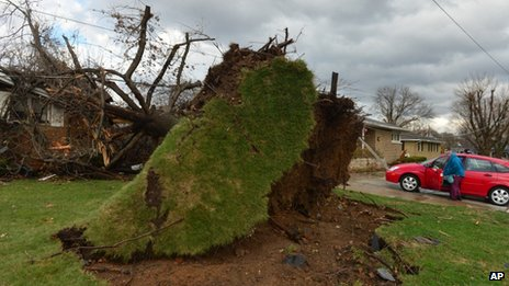 An uprooted tree in Pekin, Ill. Photo: 17 November 2013