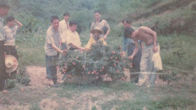 Zhu Guocheng, also known as Grandpa Lychee, showing his lychee plants to local officials and villagers