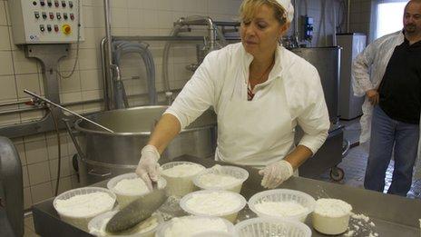 Catia Zambrelli making cheese