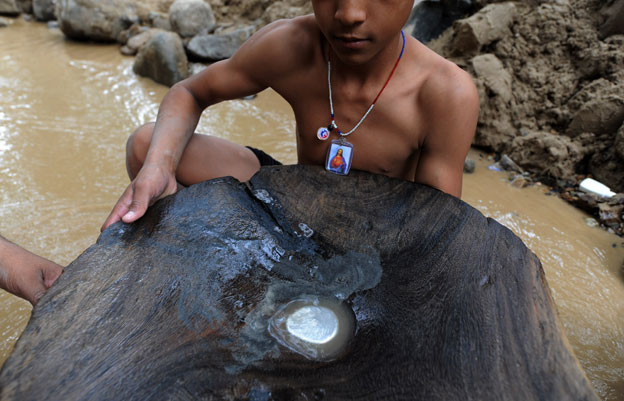 Jorge Aristides shows a wooden basin with mercury to find gold in a creek in the mountains of San Juan Arriba, 130 km south of Tegucigalpa, on February 7, 2012.