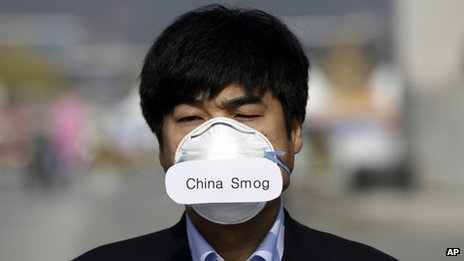 "Protester wearing ""China smog"" face mask"