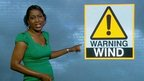 Weather forecaster points at a Wind Warning graphic