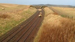 Hay bails on the lin, Aberdeenshire