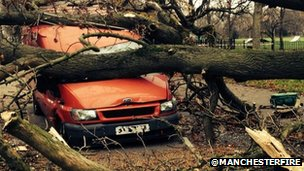 Longsight, car crushed by tree