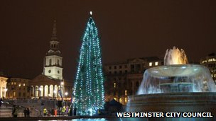 Trafalgar Square Christmas tree in 2012