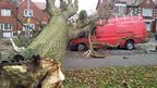 The front of a red van has been crushed by a large tree that has fallen on to the road.