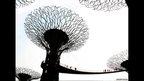 Steel Tree, Singapore