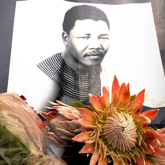 Floral tribute to Nelson Mandela, 6 December 2013