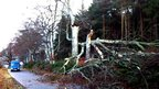 A tree partially blocks the road near Castle Fraser in Aberdeenshire.