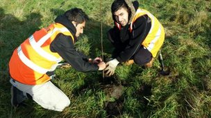 Young people planting trees in Northolt