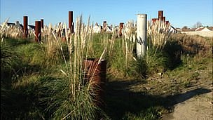 Pilings on the former Priaulx Quarry and GT Cars site