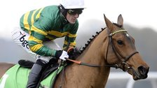 AP McCoy and former Champion Hurdle winner Binocular
